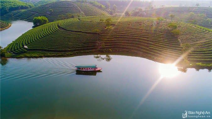Bình yên trong nắng sớm. Ảnh: Nguyễn Thanh Hải